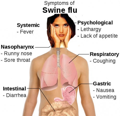 swine-flu-symptoms