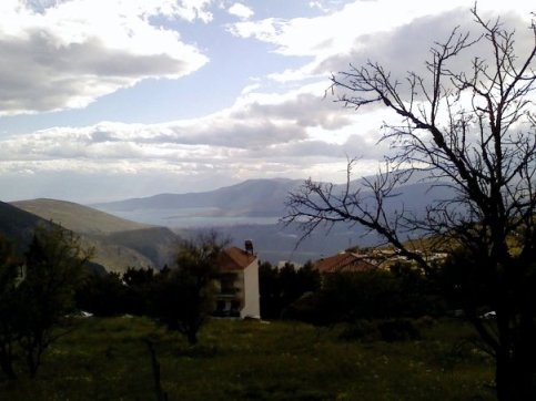 Delphi.14