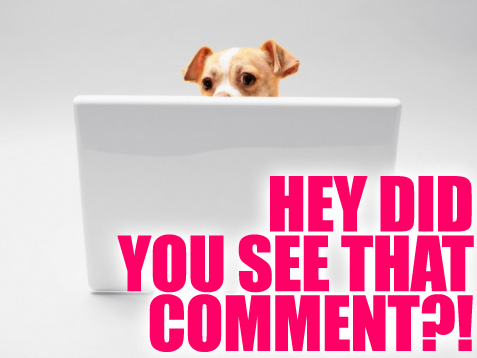 commenter-friday-72309