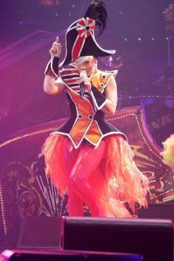 Pink Concert Australia