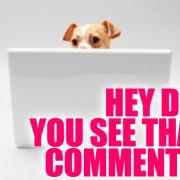 dog_commenter