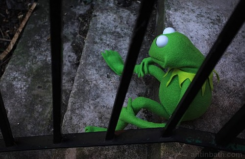 sad kermit via kermitography