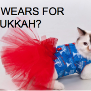 cat_chanukkah_lol