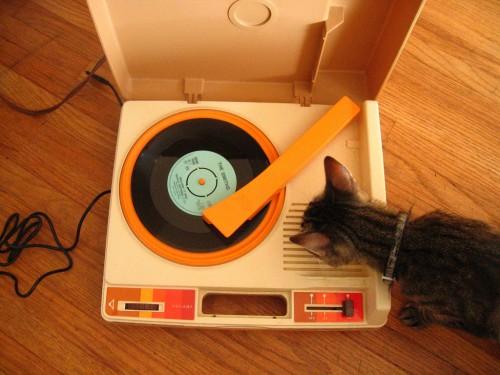 kitten turntable by huro kitty