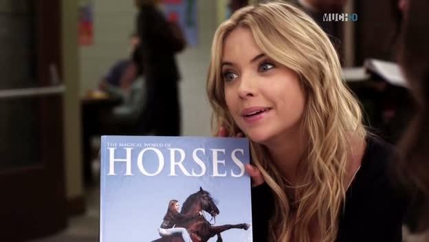 omg-horses-right