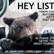 viral-bear-autostraddle