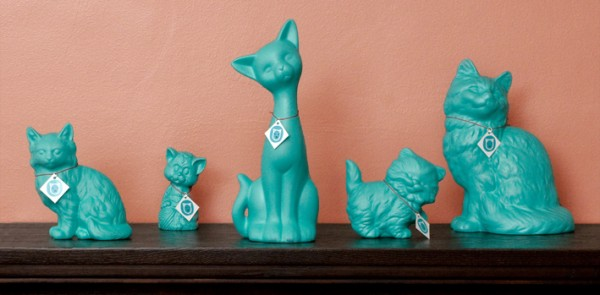 Get a Cat, Save a Cat With The Teal Cat Project