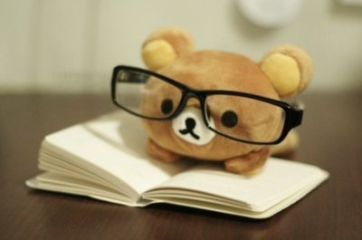 bear-with-glasses