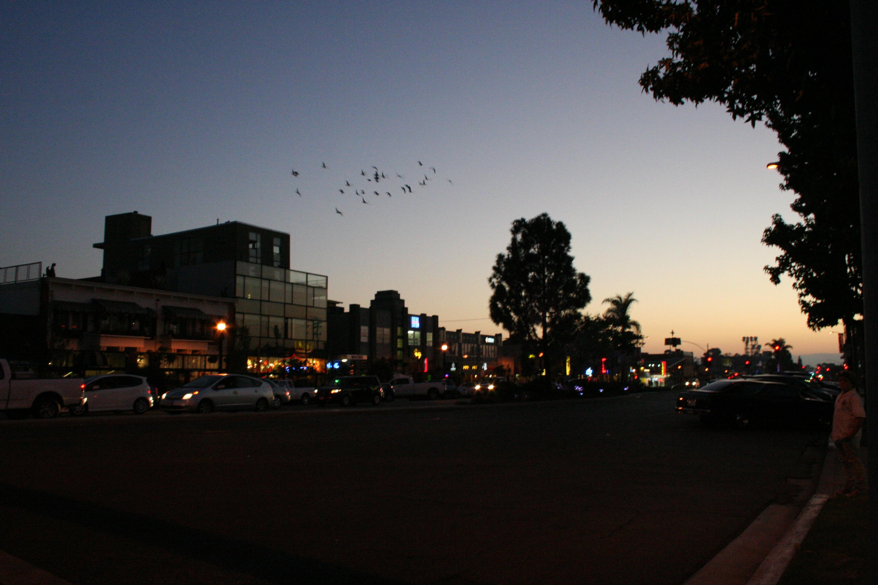 University avenue san diego california autostraddle