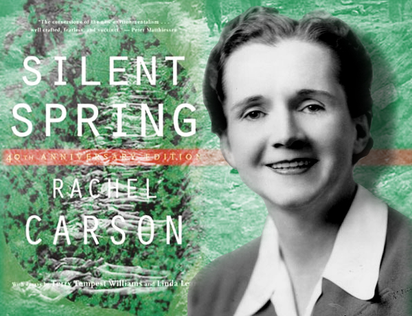 silent springs Dive deep into rachel carson's silent spring with extended analysis, commentary, and discussion.