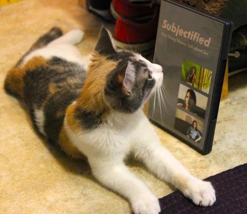 this cat has good taste in documentaries