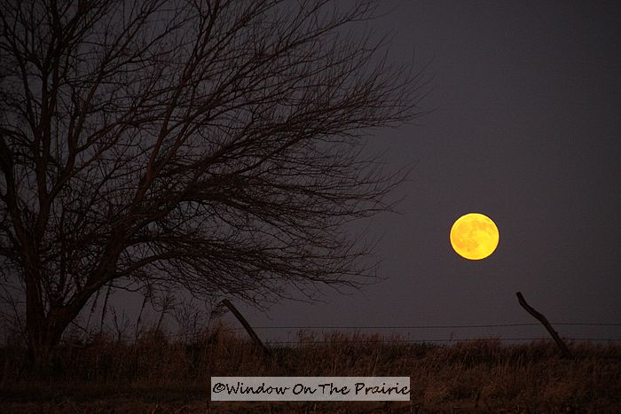 via windowontheprairie.com I'm just going to fill this post with artsy pictures of the prairies at night