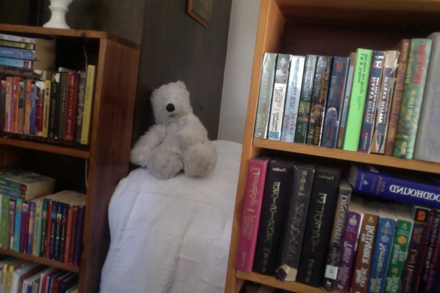 My room in my mom's house is made out of bookcases stacked with my childhood favorites)
