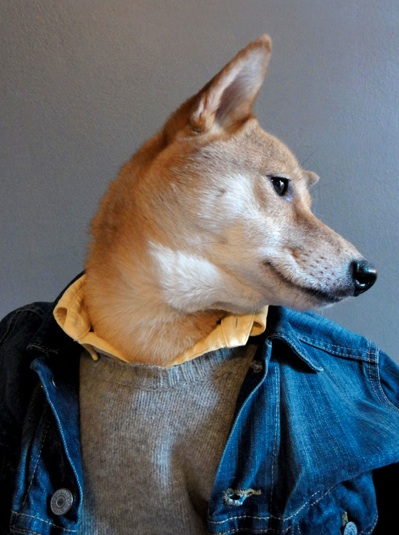 via Menswear Dog