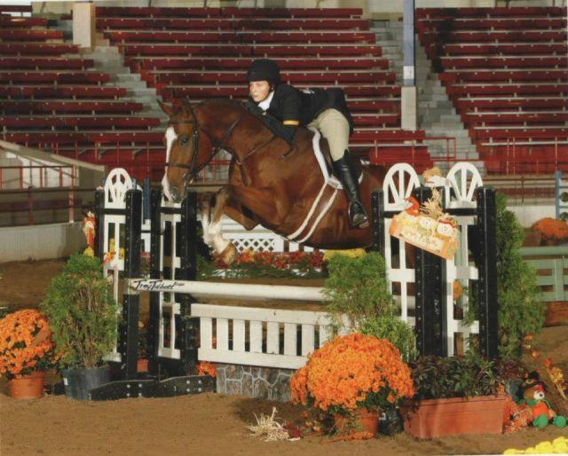 Ketzel, horseback riding