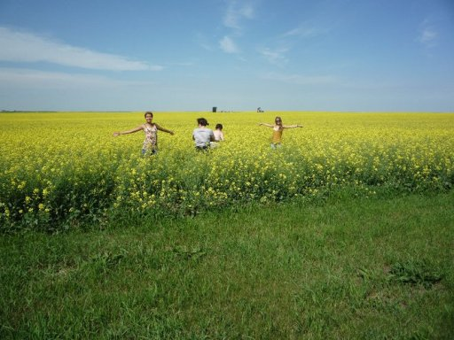 That's me on the far left. Canola fields are fun, but what no one ever tells you is they're also full of things that scratch and bite your legs!
