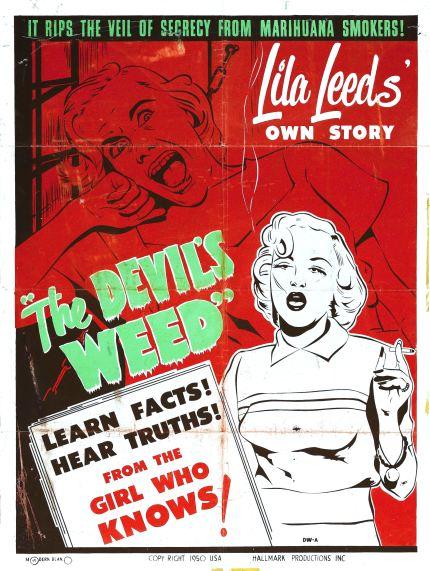 lila-leeds-weed-story