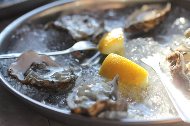 th21 640 glass oysters