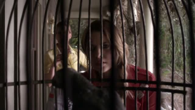 I WISH I LIVED IN ROSEWOOD SO I COULD INSTAGRAM THIS PICTURE, THROW A SEPIA FILTER AND HASTAG THE SHIT OUT OF IT. #JAIL #THEBIRDS #AREYOUINORAMIOUT #SIDEBRAID