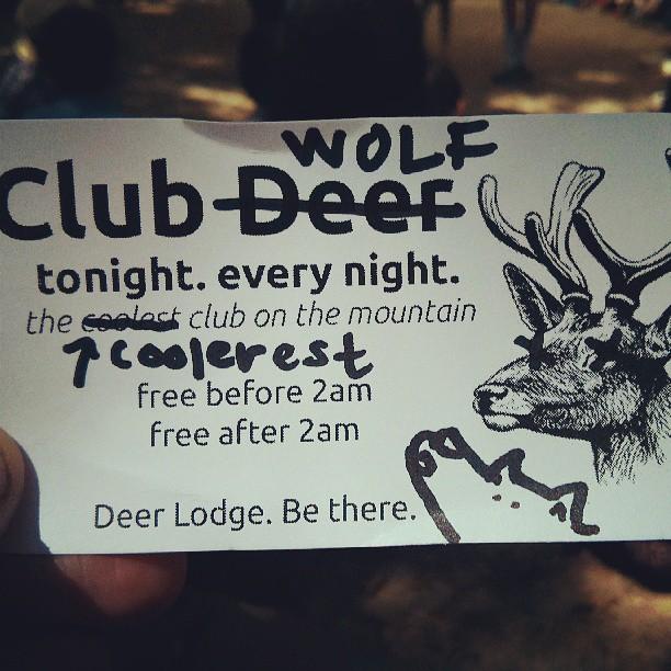 taylor attempts to hijack klub deer
