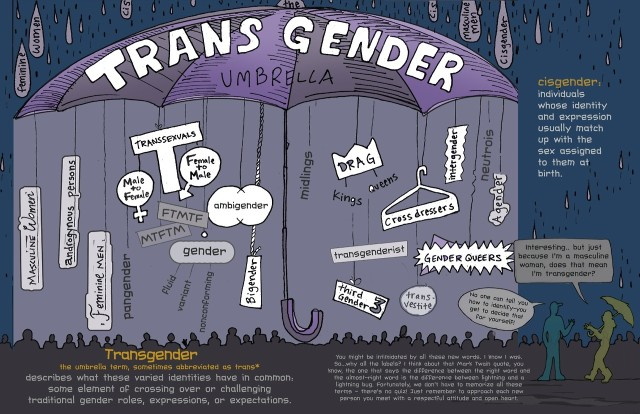 THE TRANS UMBRELLA {NOTE: GRAPHIC HAS BEEN UPDATED FROM ORIGINAL POST}