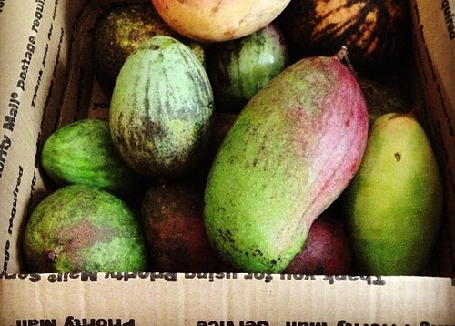 1-mangoes