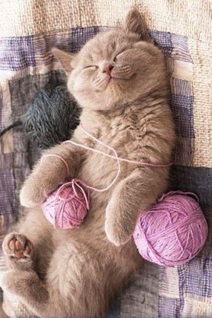 via knittingbabe.tumblr.com