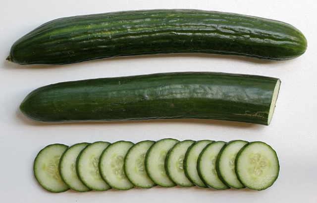 English Cukes via Biodiversity Explorer