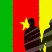 cameroon flag shadow