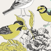 canary-illustration-via-shutterstock