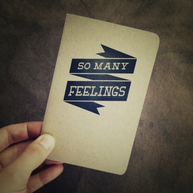 I would certainly not mind if my girlfriend were to buy me this very journal for my upcoming birthday. Ahem.