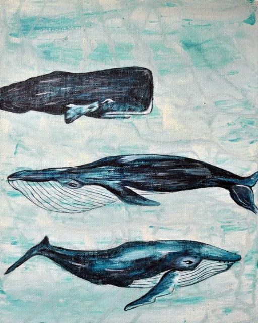 "Sea Mammals by Jess Westlake 8"" x 10"" acrylic on canvas (2013)"