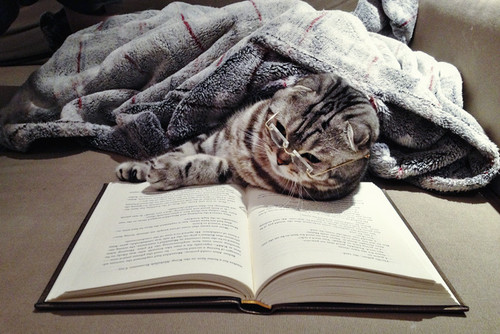 via book obsession