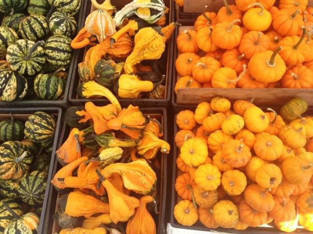 farmers market pic 2
