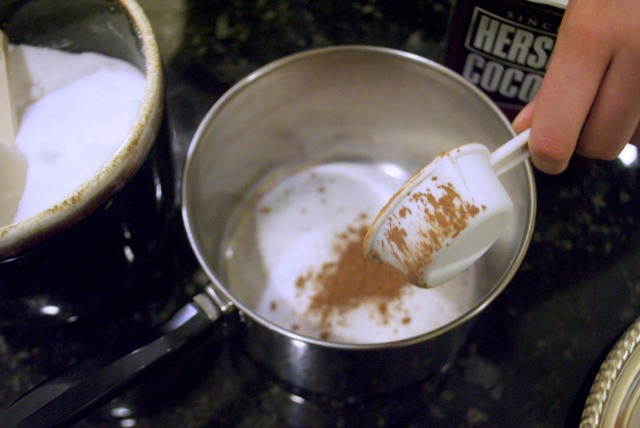 hot-cocoa-dry-ingredients