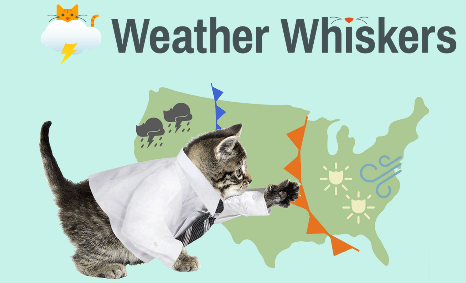 weather-whiskers
