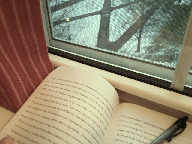 My journal poses seductively with the winter scenery