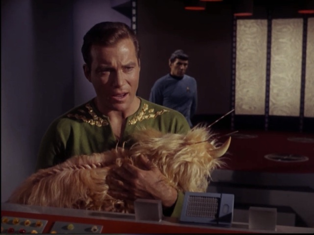 Spock: Where would you go to elude a mass search? Kirk: To our secret bedroom with the unicorn puppy.