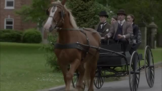 90% of this movie's budget was spent on horses and carriages.