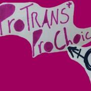 ProTrans2