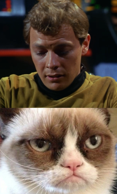 Of course, this lack of sympathy turns Bailey into a massive Grumpy Cat.