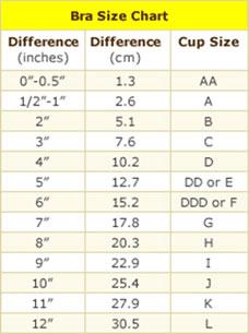 bra-size-chart