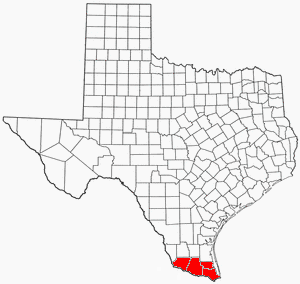 texasrgv