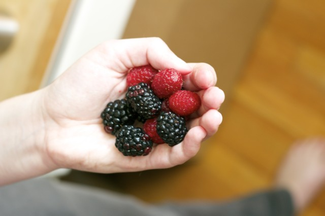 berries_in_hand