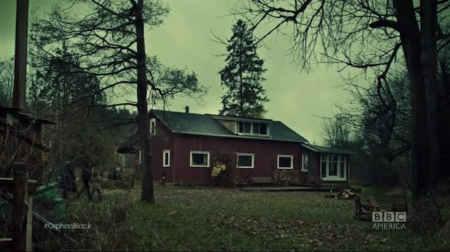 A safe cabin in the woods, SAID NO ONE EVER.
