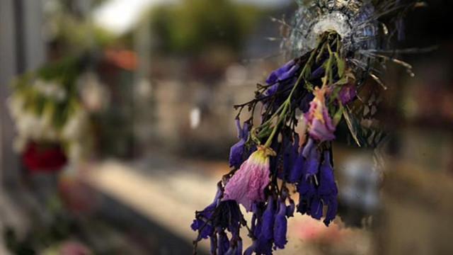 flowersivdelimart