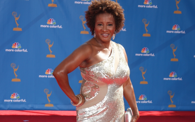 LOS ANGELES - AUG 29: Wanda Sykes arrives at the 2010 Emmy Awards at Nokia Theater at LA Live on August 29, 2010 in Los Angeles, CA. She came out as a late in life lesbian.
