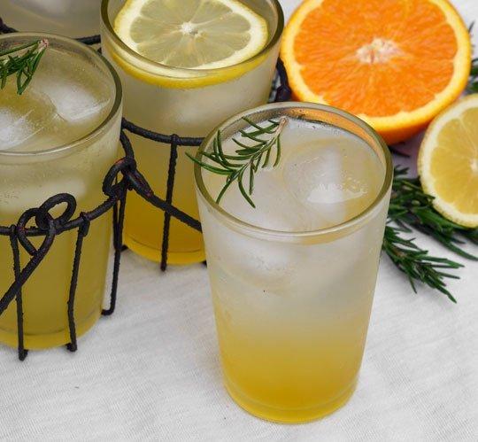 spritzer aquavit spritzer wine spritzer cranberry orange spritzer ...