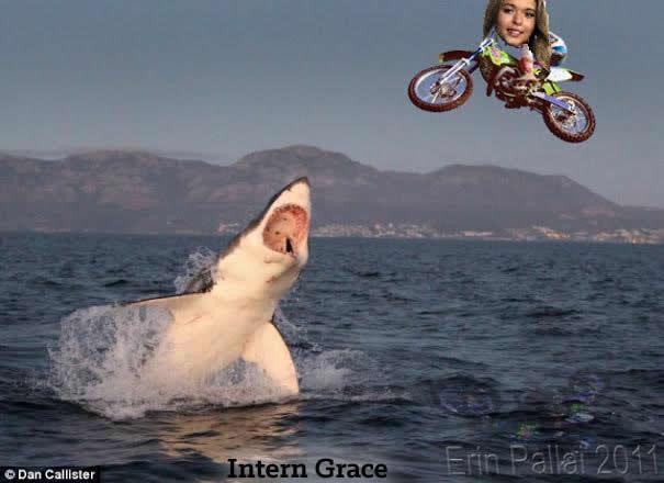 sharkjumping