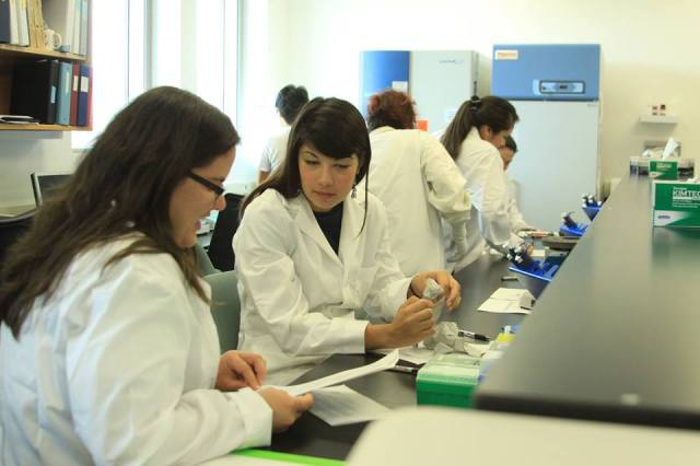 Participants at the Summer Internship for Native Americans in Genomics (SING) lab. Via Huffington Post.